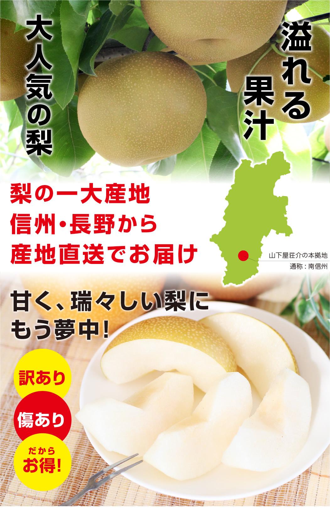 大人気の梨の品種 幸水・豊水