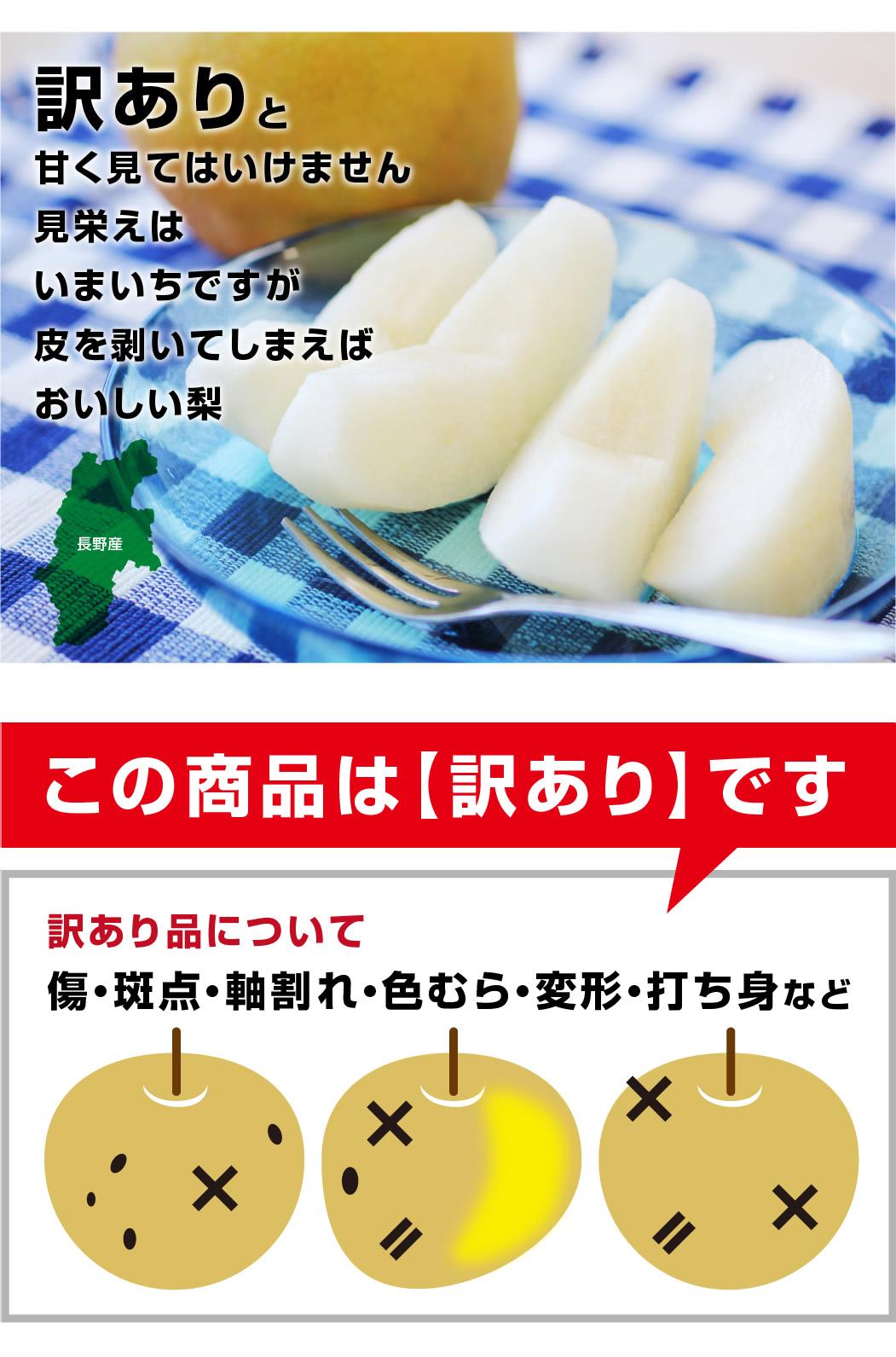 長野県産訳あり梨 5キロ