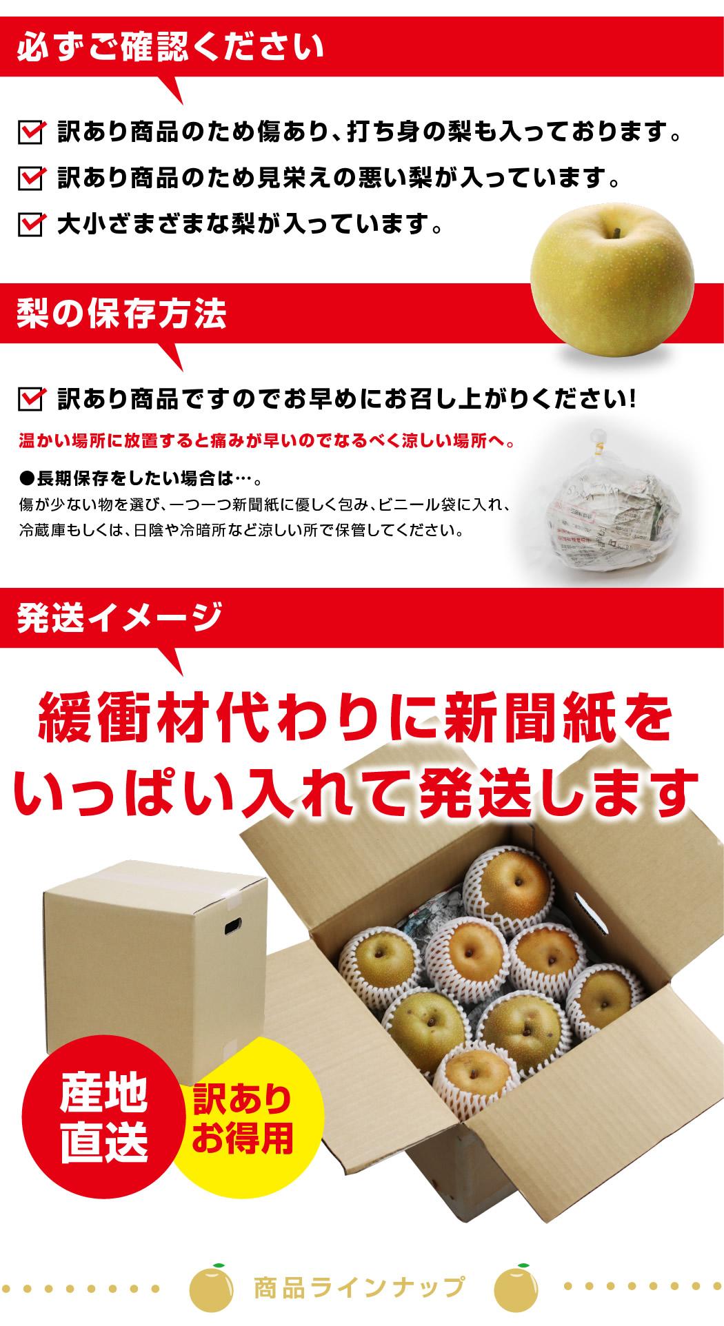 長野県産訳あり梨 10キロ