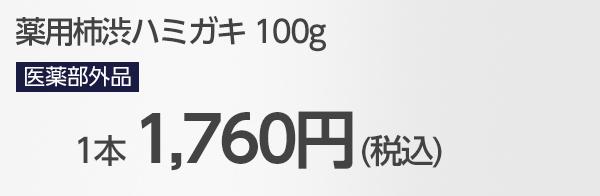 薬用柿渋歯みがき粉 100g 送料無料