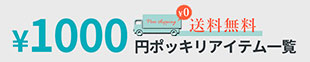 1,000円ポッキリ 送料無料