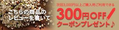 レビューで300円クーポン