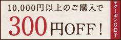毎月配布300円OFFクーポン