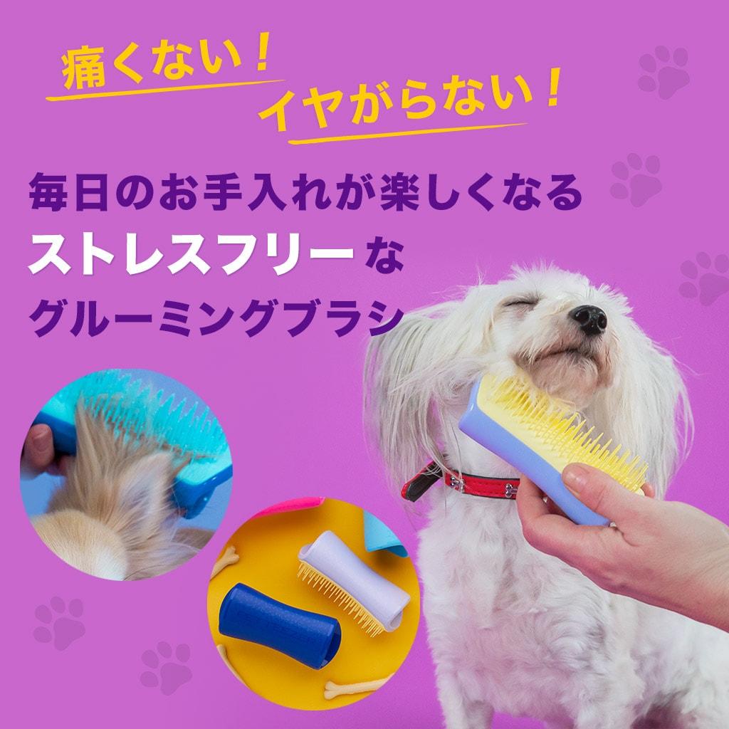 犬用ブラシ ペットティーザー