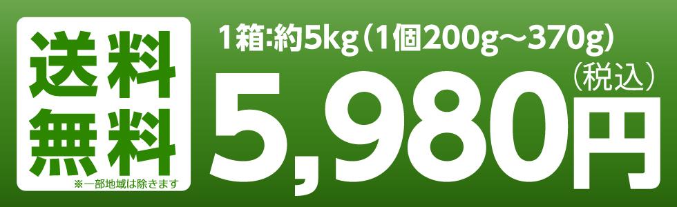 福島産 早生ふじ・サンふじ 3kg