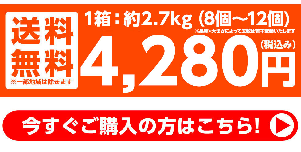約3kg(8個〜12個) 送料無料 3800円