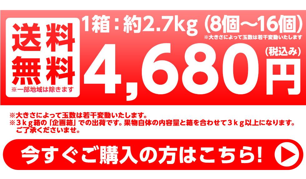 約3kg(15個〜18個) 送料無料 4800円