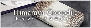 ヒマラヤクロコダイル