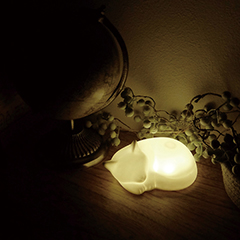 LEDネルライト