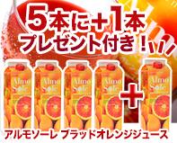 ブラッドオレンジストレート果汁100%