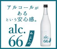 花札スピリッツ66