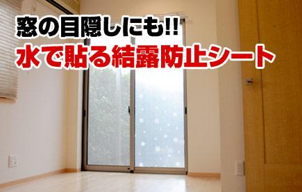 窓の目隠しにも。水で貼る結露防止シート