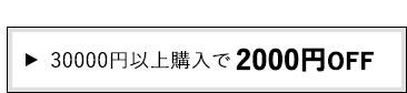 30000円以上購入で2000円OFF