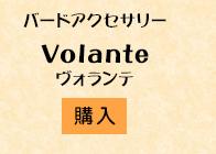 ヴォランテ購入