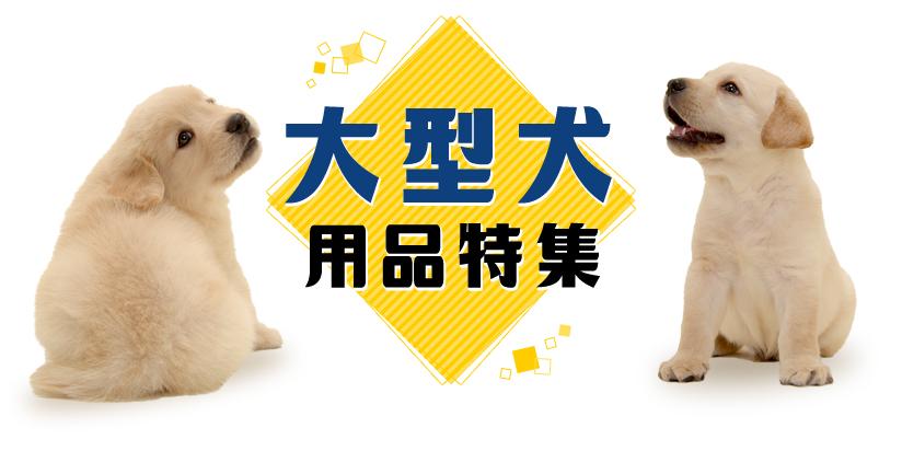 大型犬用品特集