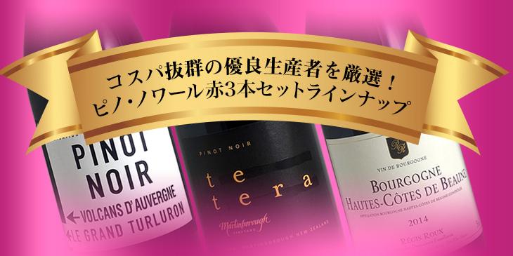 ブルゴーニュ 赤ワインコスパ3本セット