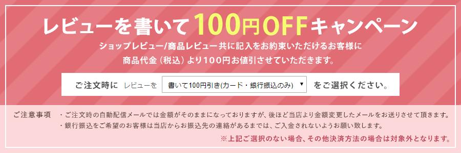 レビューを書いて100円OFFキャンペーン