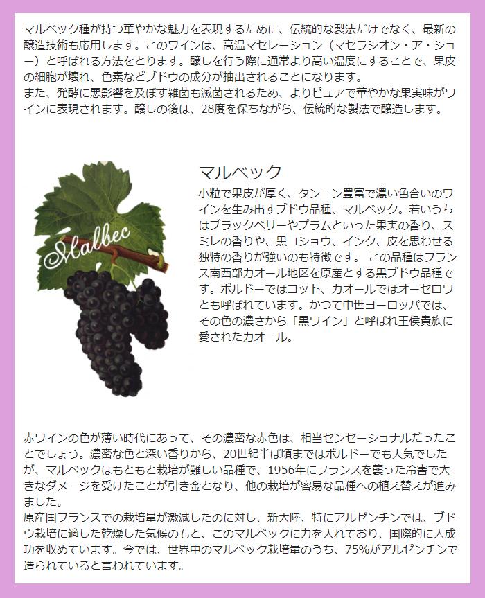 ワイン造り