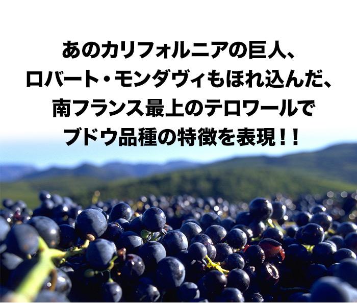 あのカリフォルニアの巨人、ロバート・モンダヴィもほれ込んだ、南フランス最上のテロワールでブドウ品種の特徴を表現!!