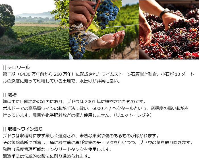 テロワール、栽培、収穫〜ワイン造り