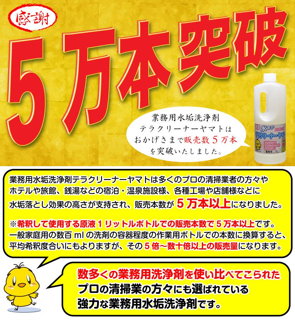 1万本売れた水垢洗剤