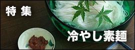冷やし素麺|和食器コーディネイト