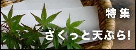 天ぷらの道具|和食器コーディネイト