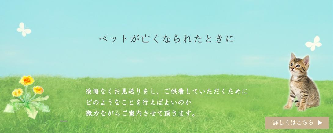 ペット供養 ペットのお墓 横田石材 Yahoo!店