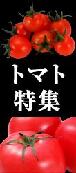 トマト特集