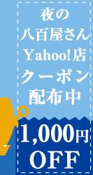 1000円OFF クーポン