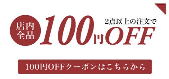 お得な100円OFFクーポン