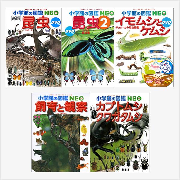 小学館の図鑑NEO 5冊セット 昆虫・昆虫2・イモムシとケムシ・飼育と観察・カブトムシ・クワガタムシ