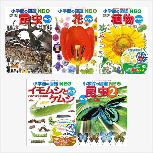 小学館の図鑑NEO 5冊セット 昆虫・花・植物・イモムシとケムシ・昆虫2