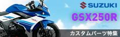 GSX250Rカスタムパーツ特集