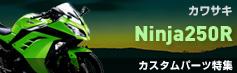 ニンジャ250R(Ninja250R)カスタムパーツ特集