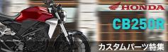 CB250Rカスタムパーツ特集