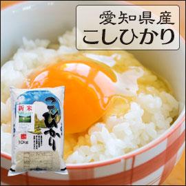 愛知県 白米 こしひかり 10kg