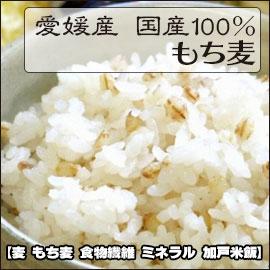愛媛県産 国産100% もち麦