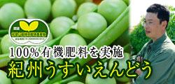 100%有機肥料で育てるこだわりうすいえんどう!和歌山県特別栽培農産物に認証済!!