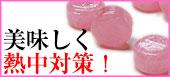 梅塩キャンディ 業務用