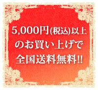 ������5000��(�ǹ�)�ʾ������̵���Ǥ���