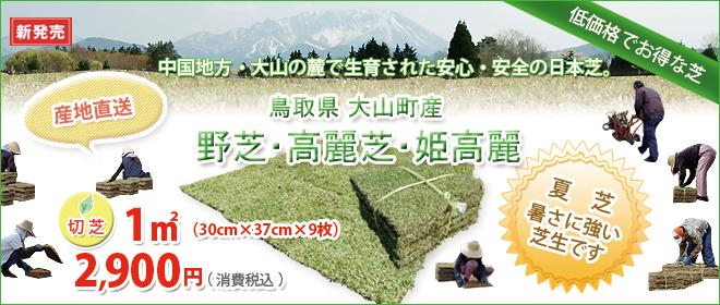 鳥取県・大山の麓で生育された安心・安全の日本芝