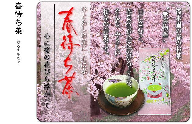 春待ち茶(深蒸し茶)