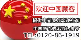 ゴールドエコヤフー店 中国語