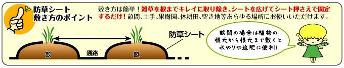 防草シート敷き方