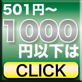 501�~�`1000�~�ȉ�