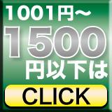 1001�~�`1500�~�ȉ�