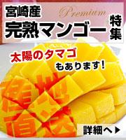 宮崎マンゴーコーナー