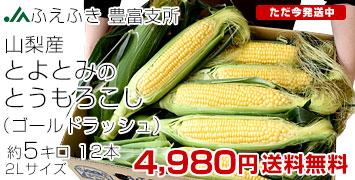 トモロコシ5キロ