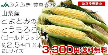 トモロコシ2.5キロ